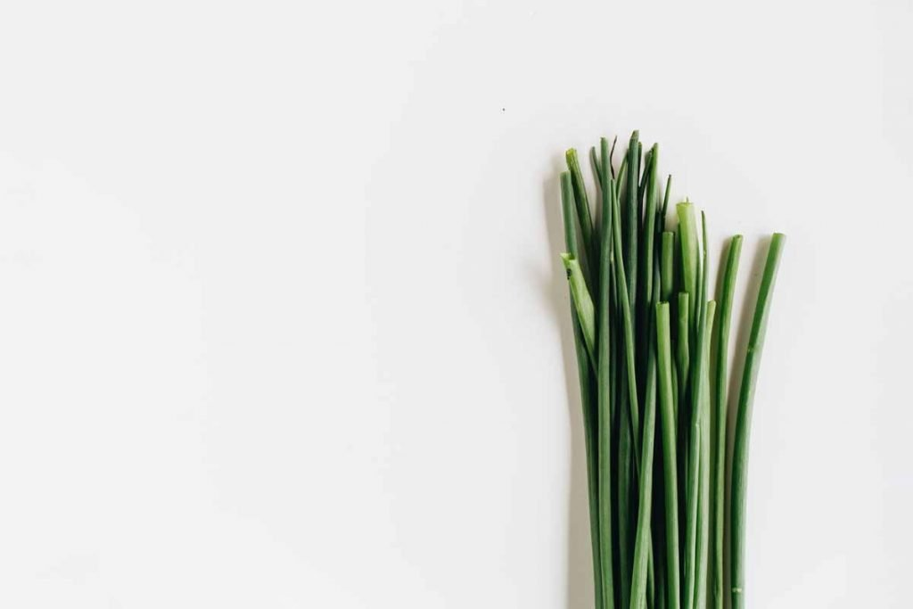 Some cut chives on a white background